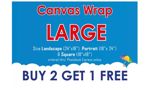 0623-188 Gallery Canvas Wrap (Large) 2+1