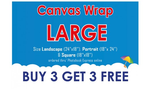 0623-188 Gallery Canvas Wrap (Large) 3+3
