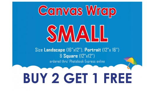 0623-98 Gallery Canvas Wrap (Small) 2+1