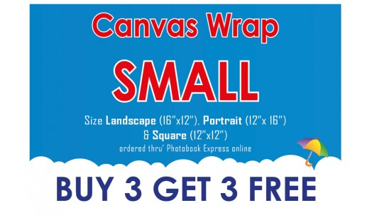 0623-98 Gallery Canvas Wrap (Small) 3+3