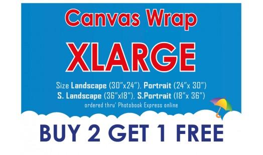 0623-278 Gallery Canvas Wrap (XL) 2+1