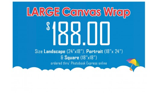 0623-188 Gallery Canvas Wrap (Large)
