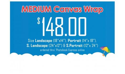 0623-148 Gallery Canvas Wrap (Medium)