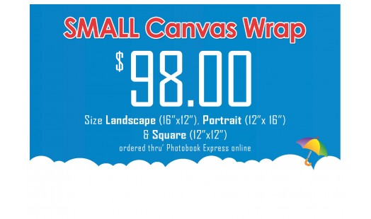0623-98 Gallery Canvas Wrap (Small)